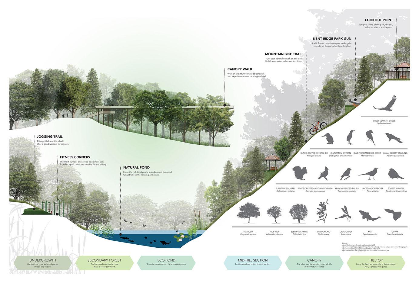 Interesting Ground Profile & Eco-System