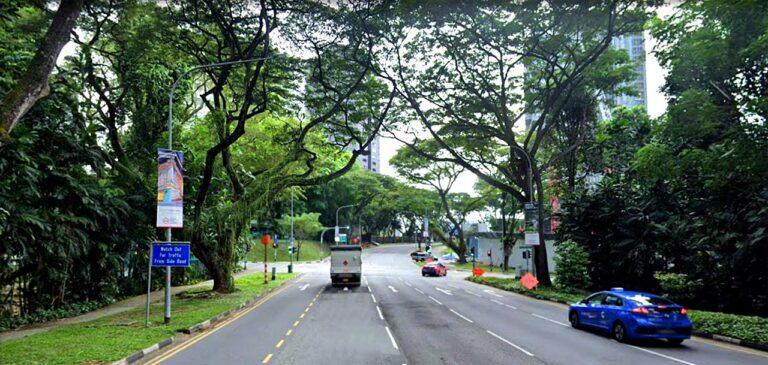 Orchard Boulevard at Park Nova Loacation
